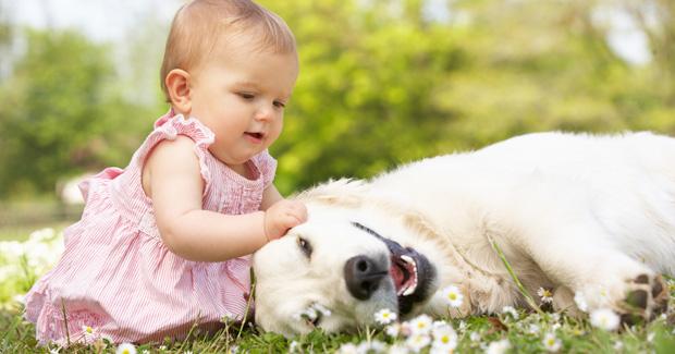 Resultado de imagen para mascota y niños
